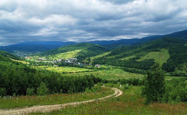 На Закарпатье создадут экопоселение с производством пищевых биодобавок