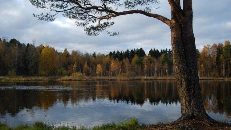 На озере Черном появится ландшафтный парк с пляжем