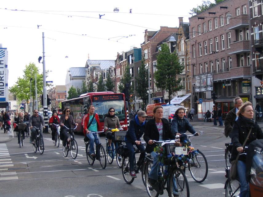 В Нидерландах хотят доплачивать тем, кто ездит на работу на велосипеде