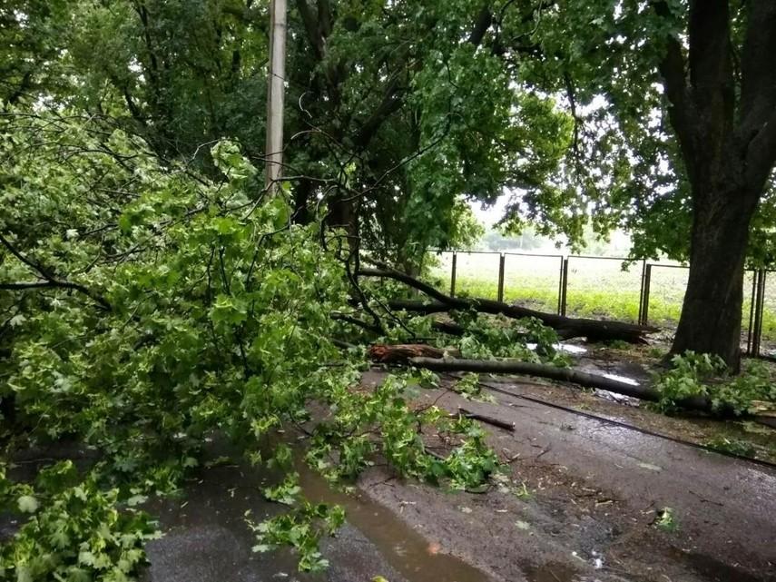Из-за непогоды почти 300 населенных пунктов Украины остались без света