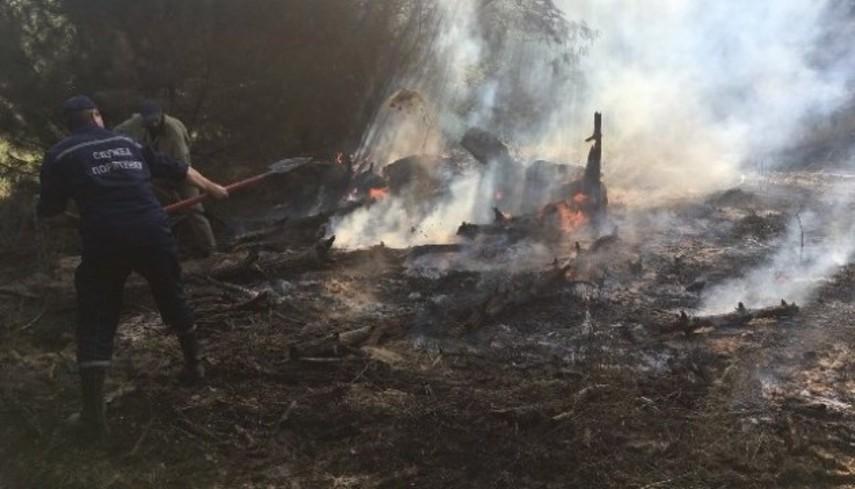 На Херсонщине горело 7,5 га леса