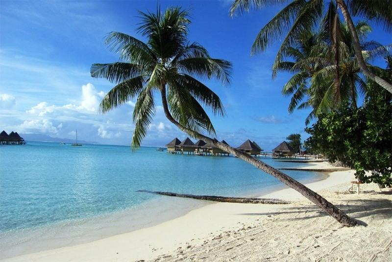 Самые красивые пляжи мира (Фото)