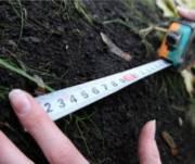 Государству вернули землю в лесу стоимостью более миллиона гривен
