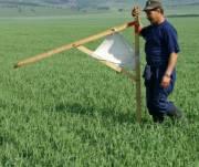 Киевской области хотят вернуть 80 гектаров земли, отданных под застройку