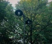 В парках столицы обустраивают современное освещение