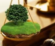Государству вернули 60 гектаров леса
