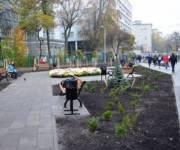 Вместо снесенных МАФов возле метро «Политихнический институт» появилась зеленая зона