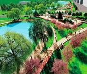 С начала года сделали благоустройство больше сотни зеленых зон в столице