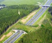 Изменят правила строительства трасс