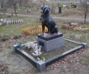 В Киеве обещают построить кладбище для животных