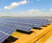 В Борисполе хотят построить солнечную электростанцию