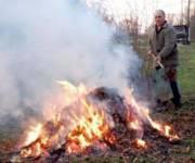 Киевлянам напомнили о штрафах за сжигание листьев