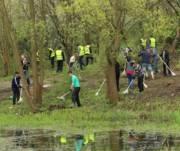 Киевлян приглашают на весенние толоки в парки