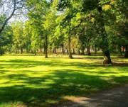В Киеве стало на 5 зеленых зон больше