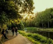 За два года в парке «Нивки» нивелируют риск возникновения оползня