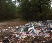 За несанкционированное выбрасывание мусора предлагают существенно увеличить штрафы