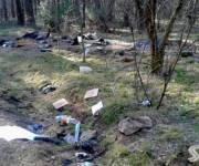 В столице очистили от мусора 40 локаций