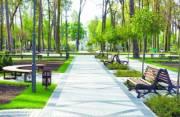 Власти сообщили, какие работы сделают в парках