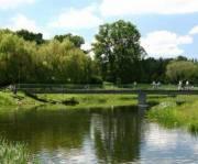 В парке «Отрадный» расчищают озеро и делают благоустройство