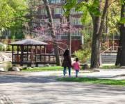 Первую очередь реконструкции зоопарка обещают завершить в этом месяце