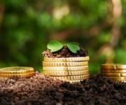 ГФС советует киевлянам сверить данные при оплате налога на землю