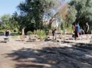 Вместо свалки у озера в Киеве высадили деревья