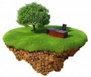 Землю на Виноградаре незаконно предоставили в аренду под самовольное строительство