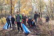 За выходные в Киеве посадили тысячи деревьев