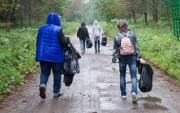 Где пройдут толоки в Киеве: перечень адресов