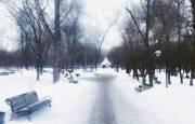 Суд рассмотрит дело о хищении миллионов гривен при реконструкции парка «Партизанская слава»