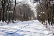 Как будет выглядеть парк имени Рыльского после реконструкции (киевлян приглашают к обсуждению)