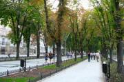 В Киеве появятся новые бульвары, а старые реконструируют
