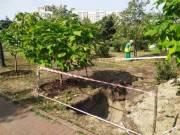 В парке «Позняки» началось строительство