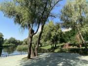Ремонтировать парк на Троещине будут еще 1,5 года
