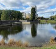 В Киеве расчистят озера в микрорайоне Теремки-2