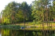 Национальный природный парк «Голосеевский» проверят