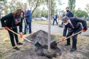 В Киеве появилась самая длинная аллея сакур в Украине