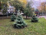 Завершили ремонт сквера на улице Татарской