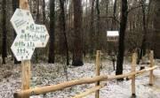 В Виноградарском лесу появилась тропа здоровья