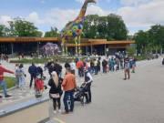 Реконструкцию киевского зоопарка продолжат в следующем году (видео)