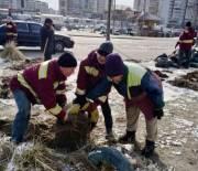 В Киеве уберут автопокрышки, которыми киевляне защищают зеленые зоны от паркования автомобилей